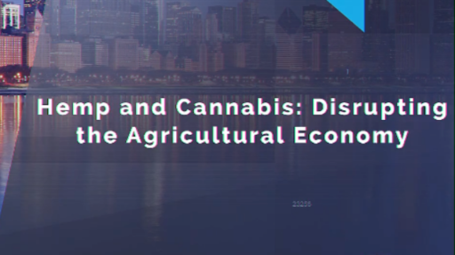 Hemp and Cannabis: Disrupting the Agricultural Economy